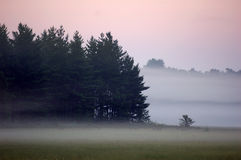 Misty Wisconsin morning. A misty morning in Wisconsin near Castle Rock Lake Royalty Free Stock Images