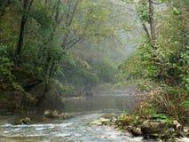 Misty woodland stream, scene. Atmospheric nature. Royalty Free Stock Photos