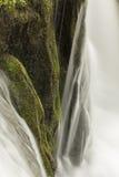 Misty Woodland Waterfall Royalty-vrije Stock Afbeeldingen