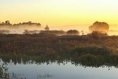 misty wschód słońca Zdjęcia Stock