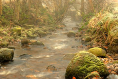 Misty Wycollar. A winters morning at Wycollar Stock Photos