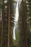 Misty Yosemite Falls Through Forest Stock Photos