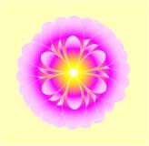 mistyczny kwiat Obrazy Royalty Free