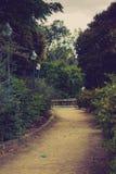 Mistyczny park Obrazy Royalty Free