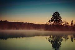 Mistyczny świt na lasowym jeziorze Fotografia Royalty Free