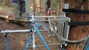 Misura scientifica dell'anidride carbonica del tronco di albero di respirazione, cambiamento globale di CO2, mutamento climatico, stock footage
