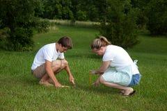 Misurazione dell'erba immagini stock libere da diritti