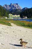 Misurina Lake Royalty Free Stock Photo