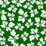 Mit Blumennahtloses Lizenzfreies Stockbild