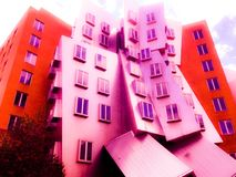 MIT Building. A pinkish tint projected onto MIT's futuristic buildings Royalty Free Stock Images