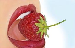 Mit Erdbeere di Mund Immagini Stock Libere da Diritti