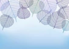 Mit Filigran geschmückte Blätter mit Kopienraum, Illustration Stockfotografie