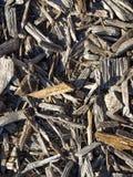 Mit Laub bedeckter Boden stockfotografie