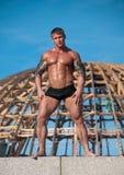 Mit Muskeln männliches Baumuster Stockfotos