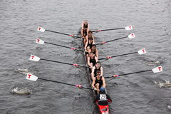 MIT races in the Head of Charles Stock Photography