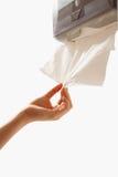 Mit saugfähigem Papiertuch aufräumen stockbilder