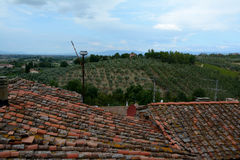 Mit Ziegeln gedeckte Dächer in Vinci-Stadt in Toskana, Italien stockbilder