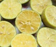 Mitad del limón verde Imagen de archivo libre de regalías