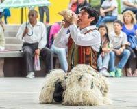 Indigenous dancers of Ecuador royalty free stock photo