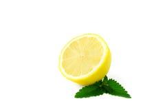 Mitad jugosa de un limón Fotografía de archivo libre de regalías