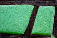 Mitad-madera verde foto de archivo libre de regalías