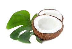 Mitades del coco con la hoja Fotos de archivo libres de regalías