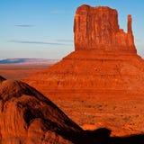 Mitaine occidentale au coucher du soleil photographie stock libre de droits