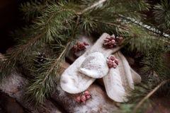 Mitaines blanches avec un jouet-coeur blanc sur les planches en bois avec les branches impeccables et les baies rouges tout autou Photos libres de droits
