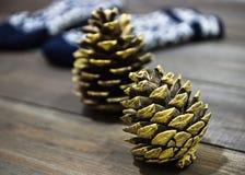 Mitaines tricotées avec l'ornement bleu blanc sur un fond en bois foncé Cônes d'or Photos stock