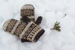 Mitaines tricotées sur la neige Image libre de droits