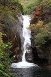 Mitake Shosenkyo gorges and Senga fall with red autumn leaves Stock Photos