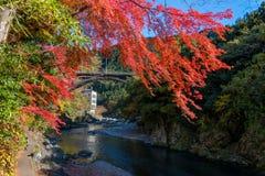 Mitake-Stadt und Tama-Fluss in der Herbstsaison Stockbild