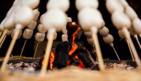 Mitarashi Dango su fuoco Immagine Stock Libera da Diritti