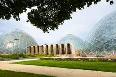 Mitchell Domes, conservatório de Milwaukee Wisconsin imagens de stock royalty free