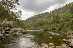 Mitchell rzeka w Gippsland, Wiktoria, Australia fotografia stock