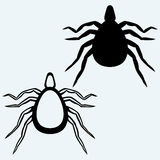 Mite bug Royalty Free Stock Photo
