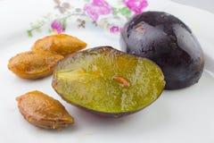 Mite de fruit de prune images stock