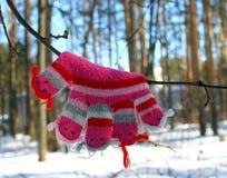 Mitenes/luvas pequenos do bebê que penduram por uma linha no dia de inverno sob a neve de queda Fotografia de Stock