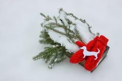 Mitenes vermelhos, figura do cão e ramos de árvore verdes do abeto na caixa decorativa de madeira na neve Imagem de Stock Royalty Free