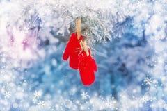 Mitenes vermelhos no pinheiro do inverno Imagens de Stock Royalty Free