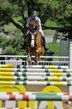 Mitfahrer auf einem Pferd Lizenzfreie Stockfotos