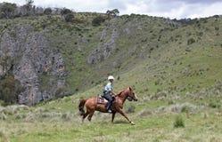 Mitfahrer des weiblichen Pferds lizenzfreie stockfotos