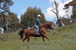 Mitfahrer des weiblichen Pferds lizenzfreies stockbild