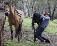 Mitfahrer und Pferd lizenzfreie stockfotos