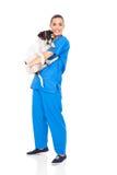 Mitfühlender tierärztlicher Hund Stockfotografie