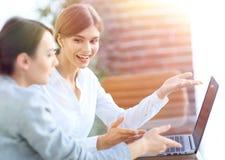 Mitglieder des Geschäfts team das Arbeiten mit Laptop Lizenzfreie Stockfotos