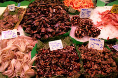 Mitili e frutti di mare sulla prospettiva del mercato dell'alimento Immagini Stock Libere da Diritti
