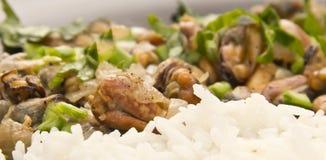 Mitili fritti con riso Fotografia Stock Libera da Diritti