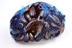 mitilo organico fresco di e in una rete blu Fotografie Stock