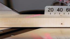 A mitra viu a madeira do corte vídeos de arquivo